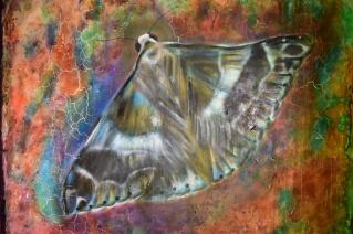 Yren_street-art-city_Le-papillon
